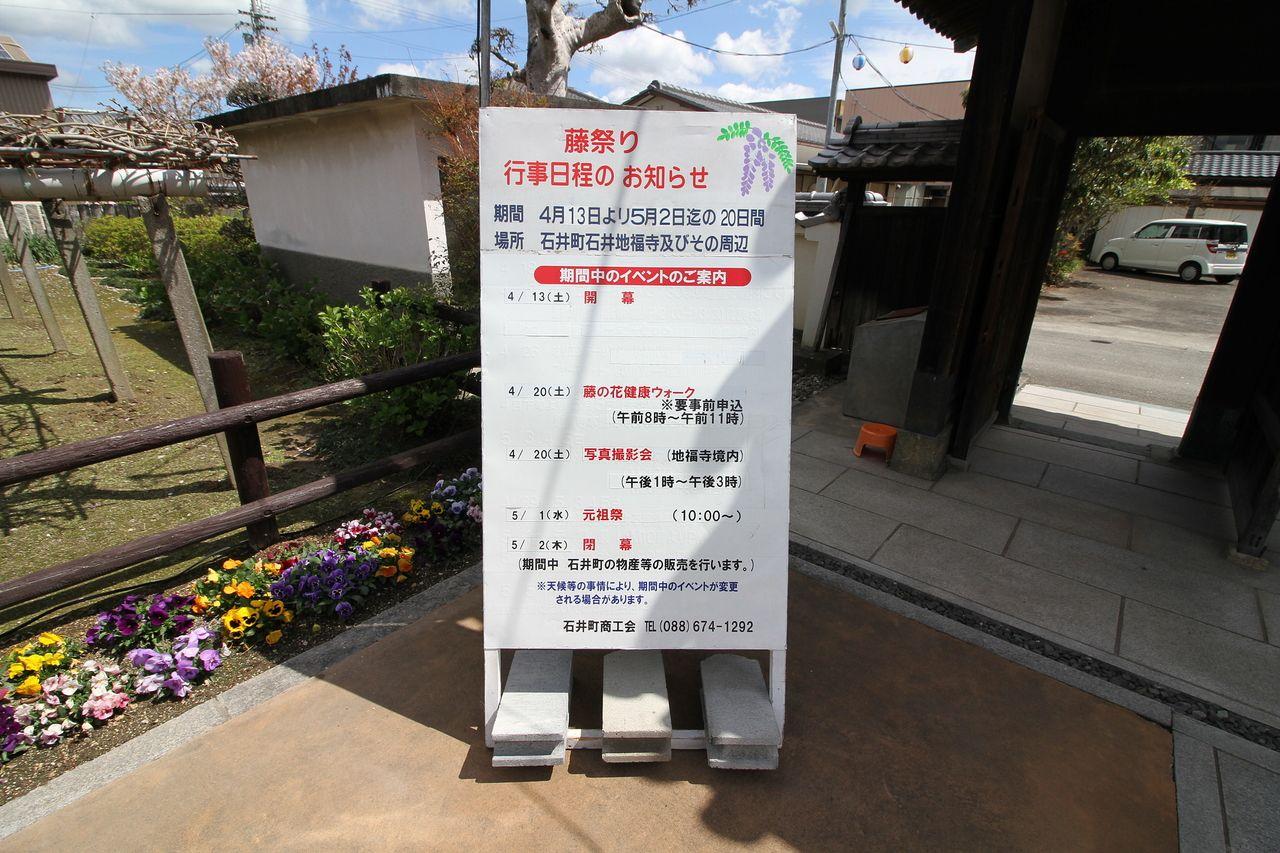 藤まつり 会場 地福寺